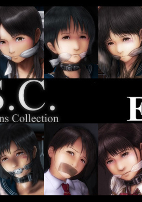 H.S.C. Illustration Collection Ex.4