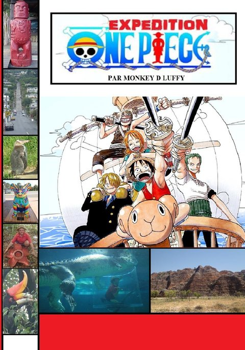 Expedition One Piece English