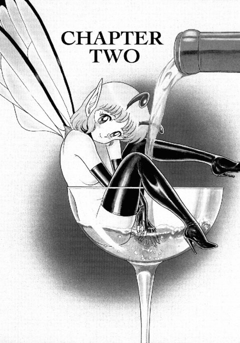 Bondage Fairies Vol1 - CH2
